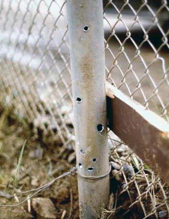 8. Da Nang AB, 366th TFW: Fence pole riddled with rocket shrapnel. 1969-1970. [Photo by Ed Burchard].