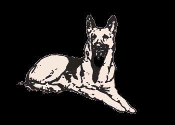 K-9 Sentry Dog icon.