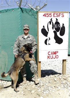 USAF 56th SFS, K-9 Cito, Military Working Dog. 2009.