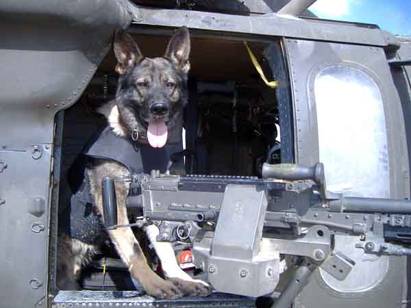 """Argo the door gunner"" - at FOB Warrior Iraq, Argo F590."